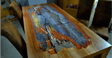 petrified wood interior
